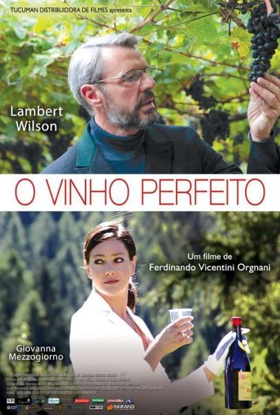 O-VINHO-PERFEITO-VINODENTRO-9876