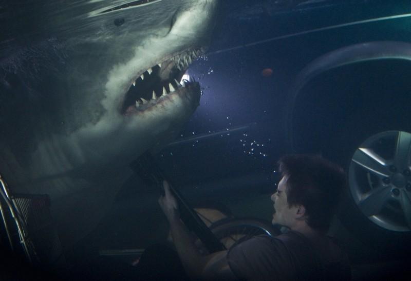 shark – il primo squalo - photo #15