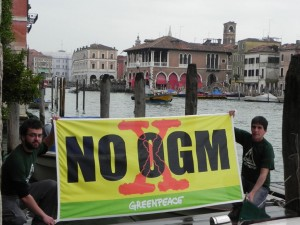 venezia-ogm-greenpeace-2928