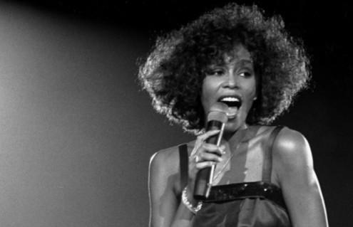 Whitney-874